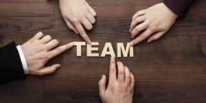 Belbin team roles - ToolsHero