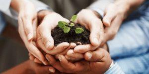 Senge five disciplines of learning - ToolsHero