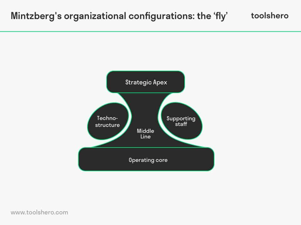 Mintzberg's Organizational Configurations, the fly - ToolsHero