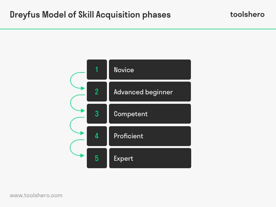 Dreyfus Model of Skill Acquisition phases - toolshero